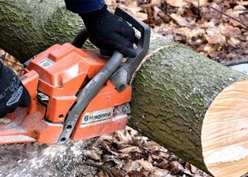 best-chainsaw